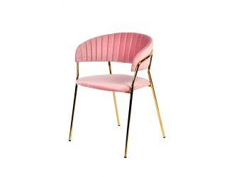 Modrest Brandy Modern Pink Fabric Dining Chair (Set of 2)